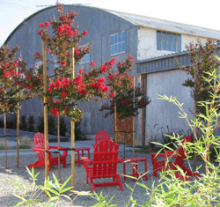 Image of red outdoor chairs in a courtyard.