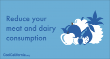 Reduce your meat and dairy consumption