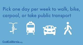 Choose alternative transportation options